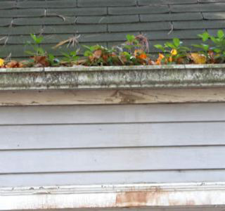 Gutter Cleaning Bentonville Ar Clooged Downpouts In